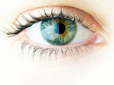 Scuola di Ottica e Optometria